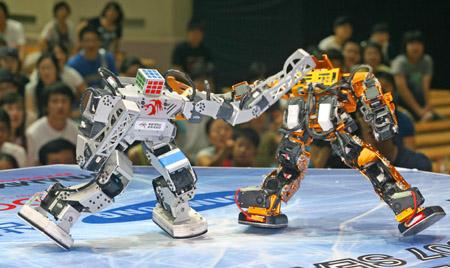 robotyarismasi